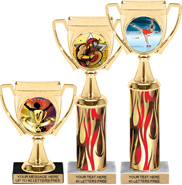 Winners Cup Color Insert Trophies