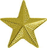 Star Chenille Pin- Gold